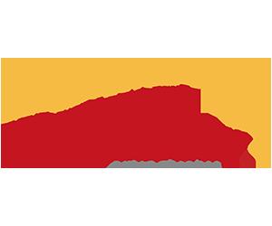 PYN- Workready